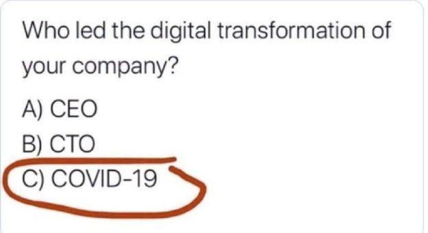 Who led the digital transformation of your company? (A)CEO (B)CTO (C)COVID-19